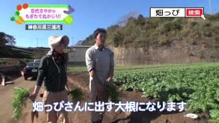 作物をお届けしている農家さんを田代さやかが突撃訪問し、皆さんに美味...