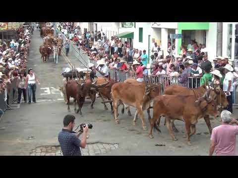 27 Desfile de Carros de Boi de Ipuiuna 09 04 2017