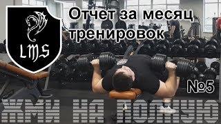 """Жим лёжа без химии по системе LMS №5 """"Отчет за месяц тренировок"""""""