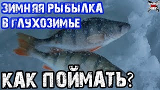 когда плохо клюет ОКУНЬ. Зимняя рыбалка в глухозимье. Уловистая мормышка на окуня