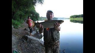 Рыбалка на озере и на Днестре
