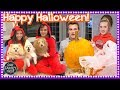 HALLOWEEN SPECIAL 2017 - OUR FAMILY NEST