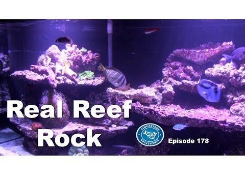 Real Reef Rock Part 3 of the Fincasters 180 build series. Fincasters Episode 178