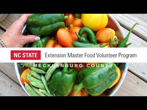 Mecklenburg Extension Master Food Volunteer Program