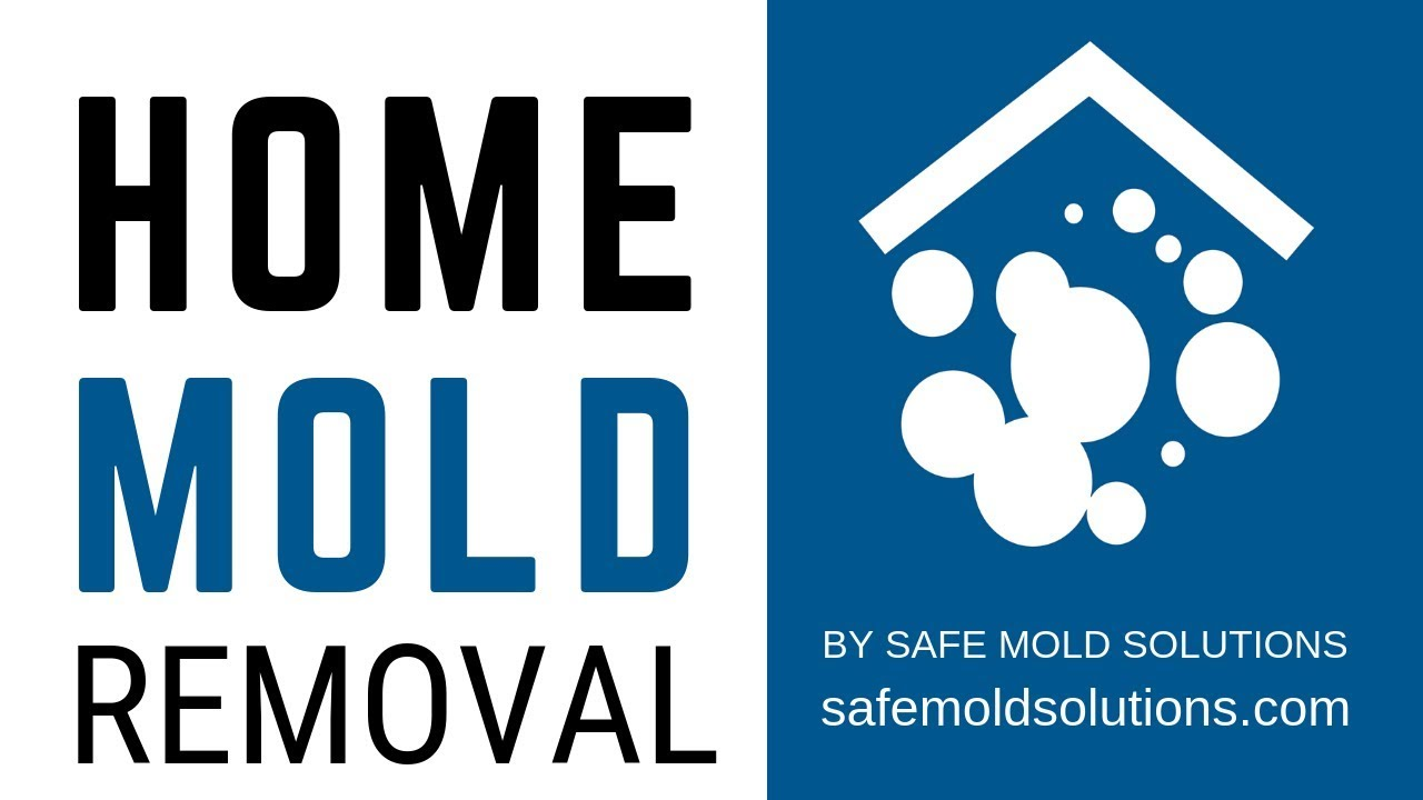 Home Mold Removal By Safe Solutions Testimonial Jane Allen
