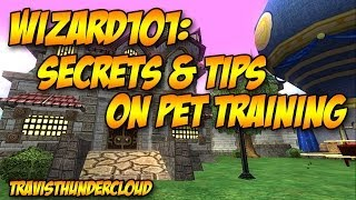 Wizard101: Secrets And Tips On Pet Training
