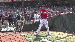 Corey Seager - 2014 MLB Futures Game BP