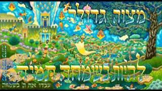 metalish  Dani maman-מטאליש  דני ממן