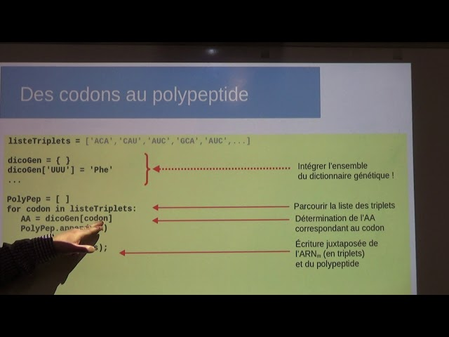 Traduction de l'ARNm en polypeptide. Construction du polypeptide en langage Python [2/3]