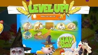 Hay Day - My Baby Farms Derby, New Goats, Level Up and More