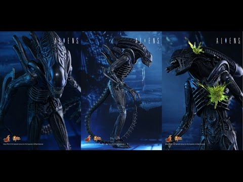 Hot Toys: Alien Warrior 1/6 Scale Figure (Aliens) Review #54