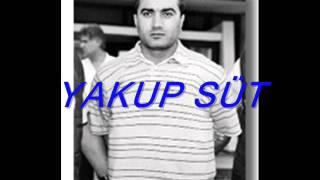 Gambar cover KÜRT MAFYA BABALARI