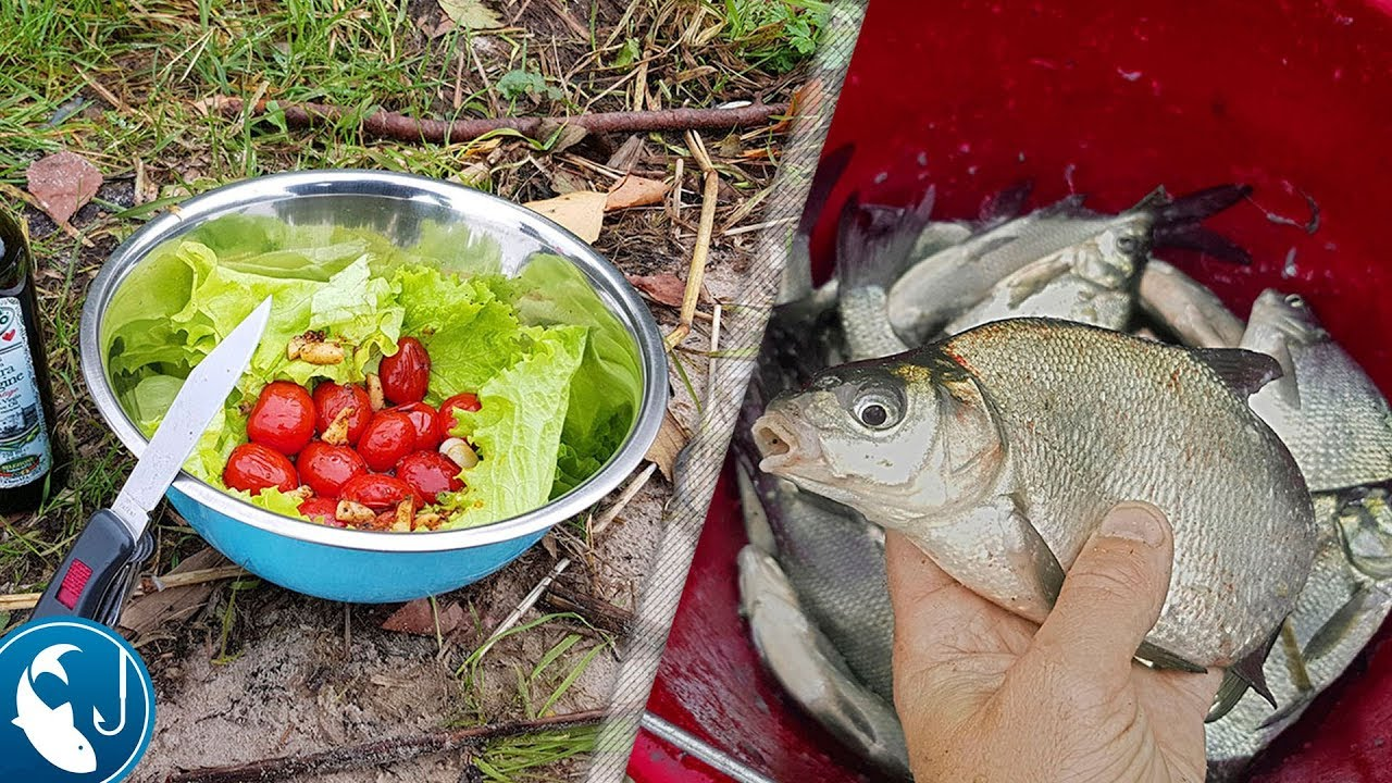 рыбалка на леща летом на фидера