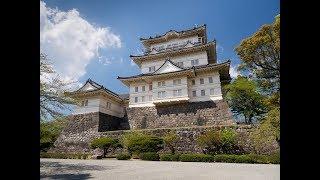 Япония -  Замок Одавара. Японские Макаки.  Охота Японского кота.
