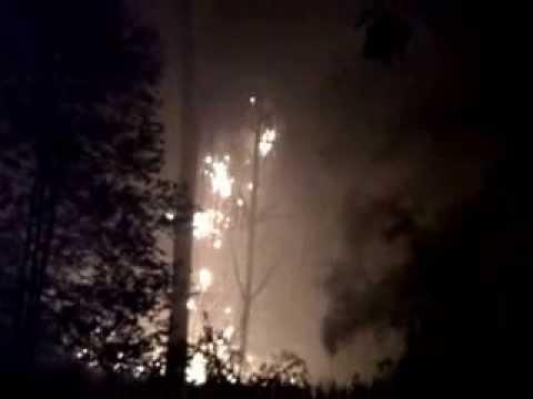 Inilah Video Dahsyatnya Karhutla Di Bengkalis Saat Malam Hari