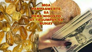 Mga Pampaswerte Sa Peranigosyo At Tagumpay Sa Buhay-apple Paguio7