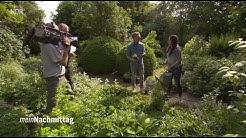 NDR Mein Nachmittag – Der beste Weg zum pflegeleichten Garten