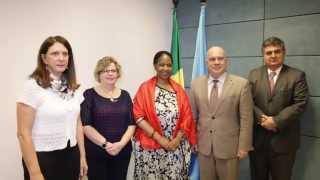Visit to Resident Coordinator of UN Brazil, Niky Fabiancic - Brasília