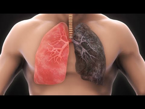 Clean Your Lungs In 3 Days with This Amazing Remedy | Natural Health
