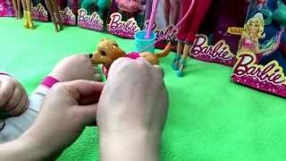 Barbie Potty Training Taffy Unboxing And Review Of The Pooping Dog Toy Playset