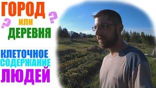 видео Деревенский Философ