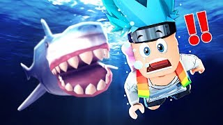 SOPRAVLIVES OF THE SHARK!! LOKKI on ROBLOX ITA