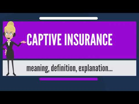 What is CAPTIVE INSURANCE? What does CAPTIVE INSURANCE mean? CAPTIVE INSURANCE meaning