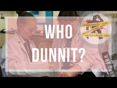 Who Dunnit?