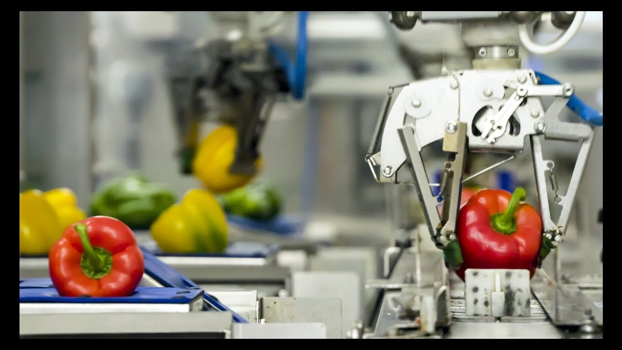 Robot-assisted packaging: 30% more productivity