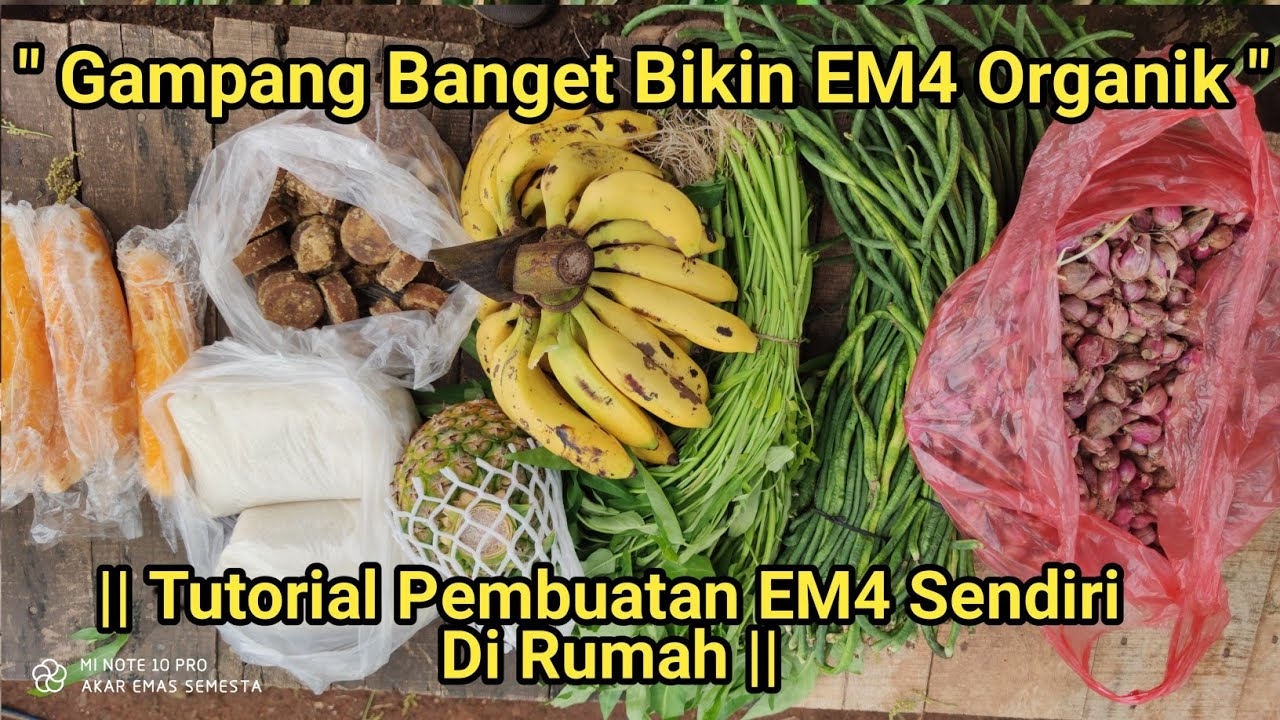Cara Buat EM4 Organik Dengan Mudah || Dari Bahan Bahan Alami ||