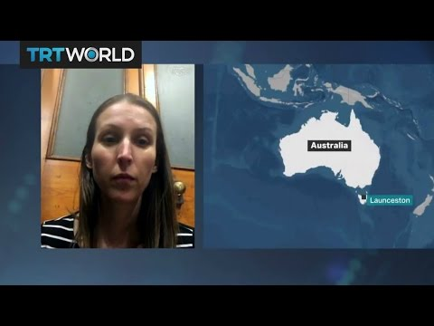 Plastic Pollution: Interview with Marine Scientist Jennifer Lavers