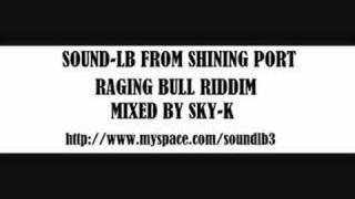 raging bull riddim mix