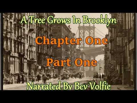 A Tree Grows In Brooklyn!  Ch1 Prt 1