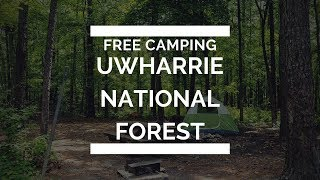 Free camping in Uwharrie National Forest!!