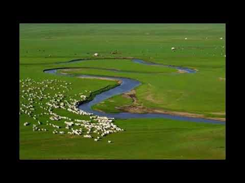 Teana Seven Vowels(Grassland Song)