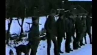 Polowanie zbiorowe w Bukowie/Czlopa