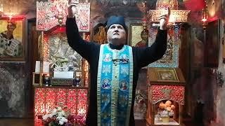 Preot Vasile Spătaru Predica de pe 7 noiembrie 2020