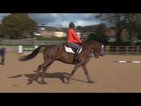 Showjumping training for eventers Part 3