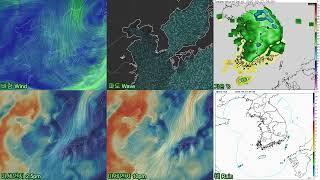 오늘의 날씨, 실시간, 미세먼지, 날씨, 태풍경로, 비…