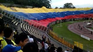 Deportivo tachira... bandera de venezuela