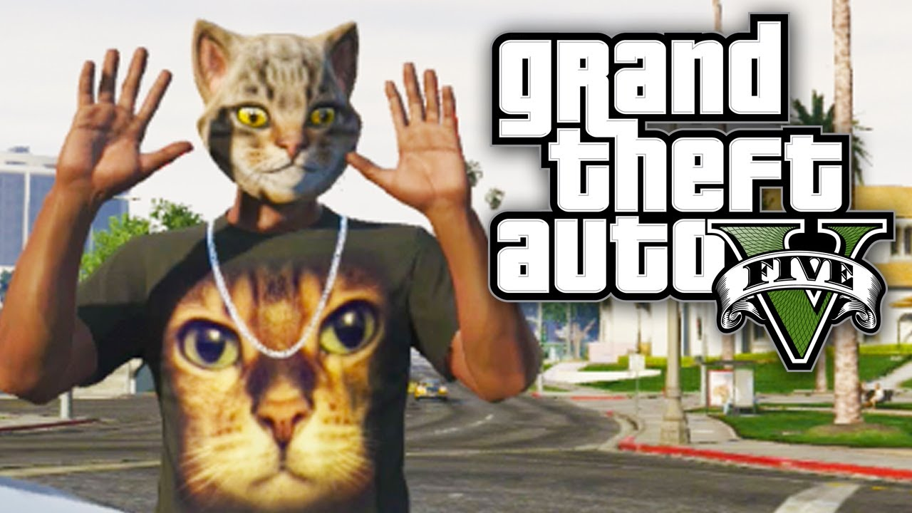 gta 5 online funny moments   cat daddy fighting myself