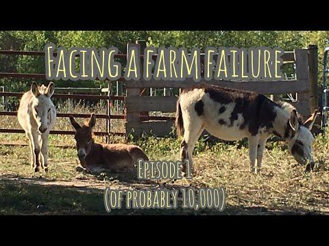 Facing a Farm Failure