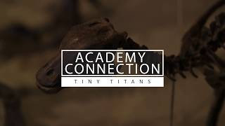 Academy Connection: Tiny Titans