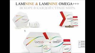 Щитовидная железа и Ламинин  Другие РЕЗУЛЬТАТЫ и продукты LPGN КОРР