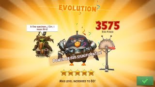 Angry Birds Evolution: Bomb, Into the Thunderdome