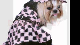 Glamour dogs Thumbnail