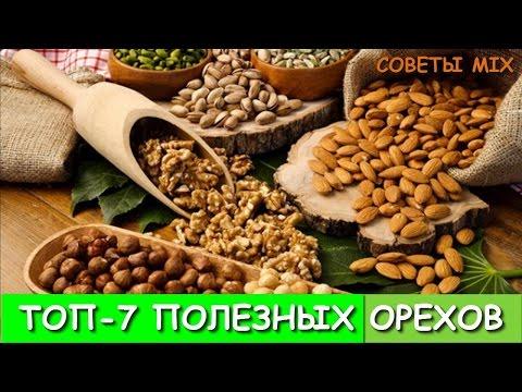 Кедровый орех - питательные и лечебные свойства