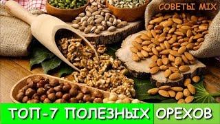 ТОП-7 самых полезных орехов: Питательные свойства для организма Виды орехов А ты знал?