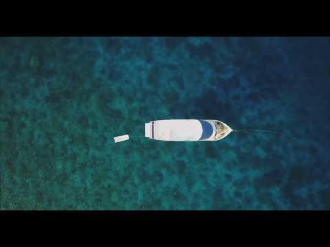 Soul Surf Travel | Blue Star Safaris | Maldives