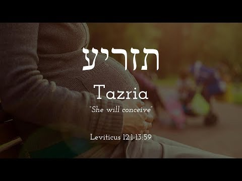 Tazria - Free Biblical Hebrew Lessons, Learn Trope